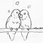 Mes oiseaux sont mignons quand ils sont comme ça!